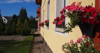 Lucinel - Flori si iara flori...