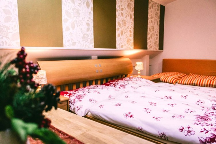 Cazare la Viena de la 45 euro noapte cu pat matrimonial