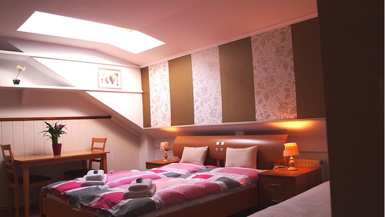 Camera dubla confort - Cazare Viena - Pensiunea Lucinel