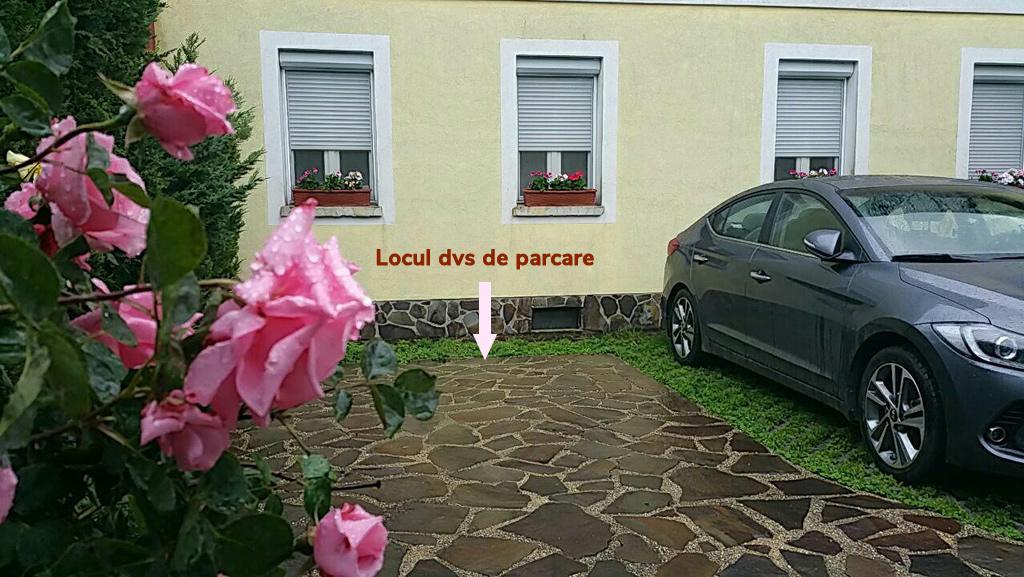 Loc de Parcare Pensiunea Lucinel Viena