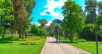 Cu bicicleta prin Parcul Dunarii Viena