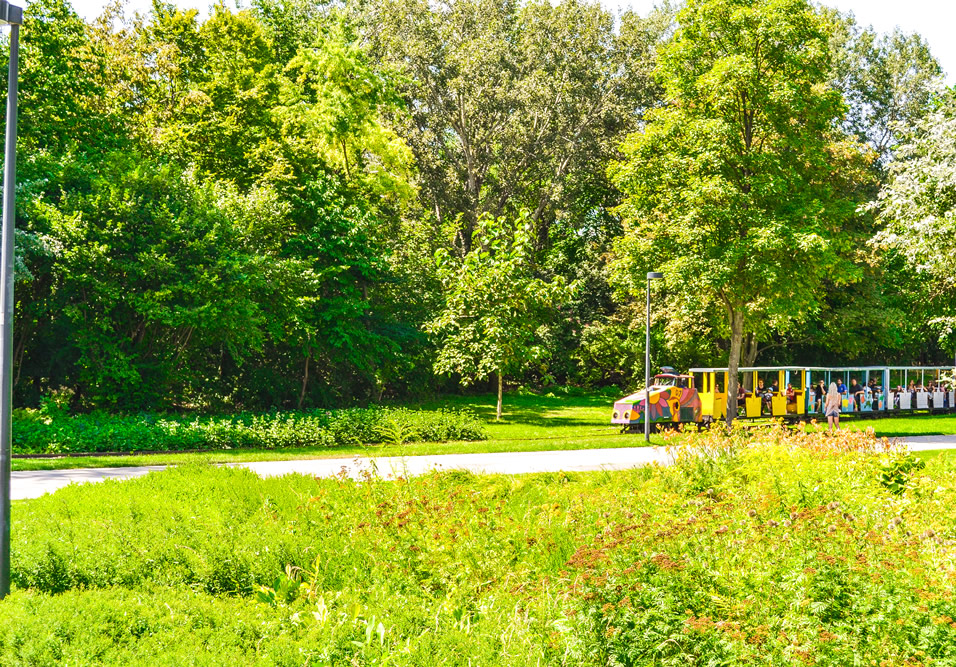 Cu trenuletul prin Donaupark Viena