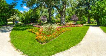 Flori - Parcul Dunarii Viena