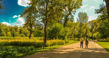 Parcuri in Viena - Parcul Dunarii