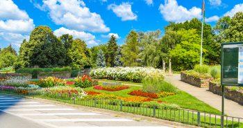 Plimbare Parcul Dunarii Viena