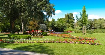Recreere in Parcul Dunarii din Viena