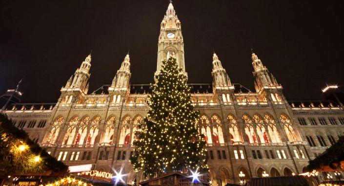 Weihnachtsbaum_la_Targ_de_Craciun_Viena